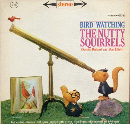 Nutty_Squirrels-Bird_Watching