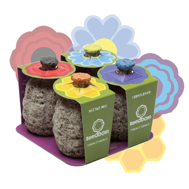 Wildflower Selection 4 Pack by Kabloom