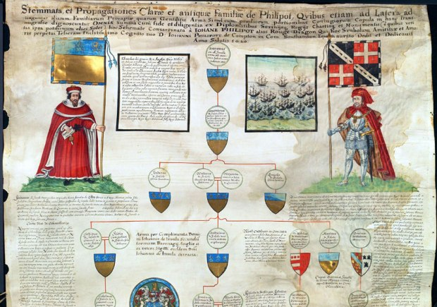 Section of Pedigree of the Philpot family, drawn in 1620. Source