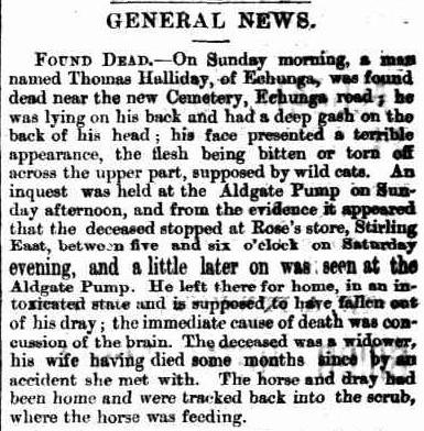 Article regarding Thomas' death, taken from The Mount Barker Courier and Onkaparinga and Gumeracha Advertiser, Friday 6 May 1881